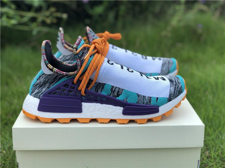 Pharell Williams x SolarHu NMD Runner Trail Solar Pack